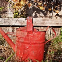 watering-can-1466632_640